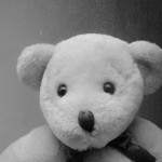 cropped-teddy.jpg